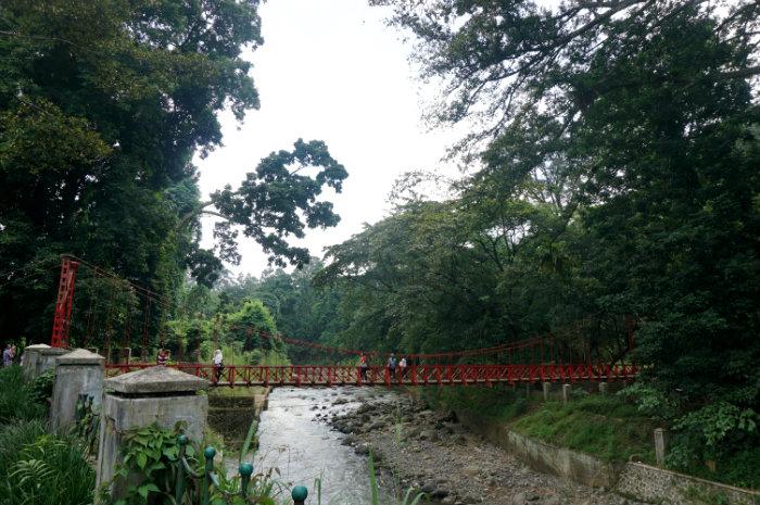 Pics Of The Month March 2015 Bogor Botanical Garden