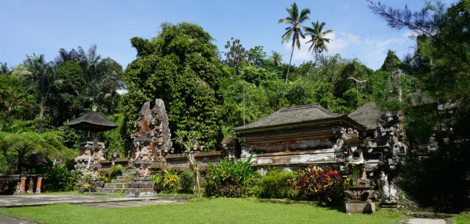 Image Result For Bali Tours Com