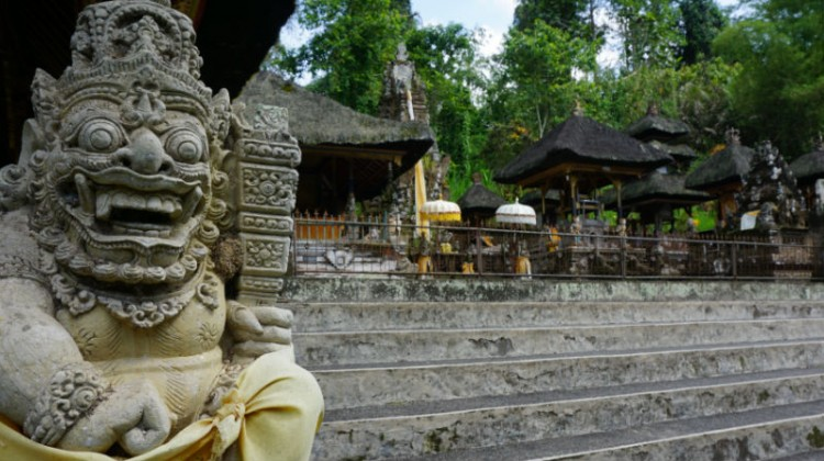 Image Result For Bali Day Trip