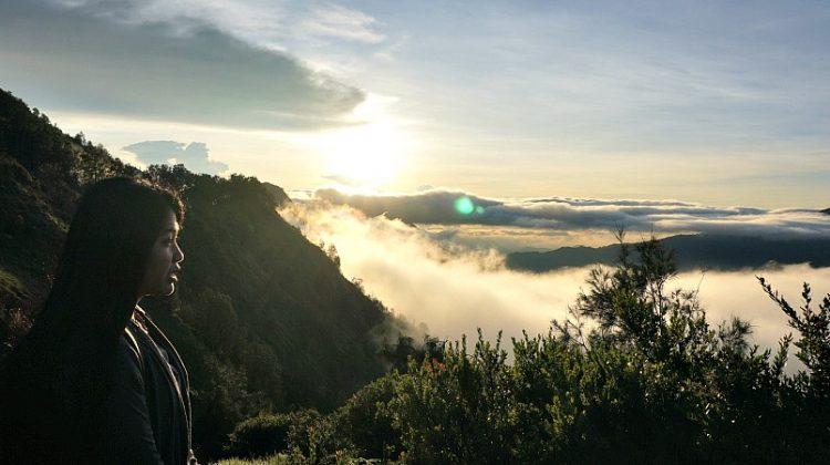 Bukit Cinta Bromo one of the things to do in Malang