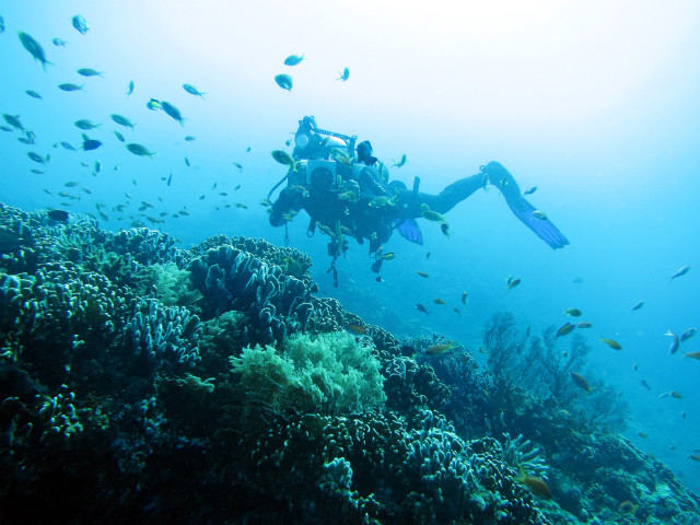 place to dive in gili
