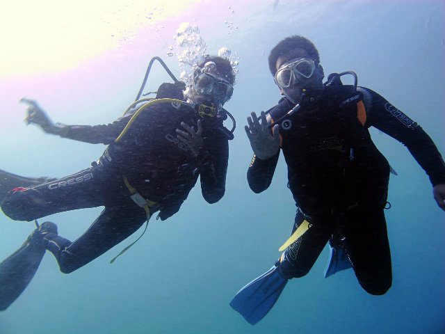 how divers can help to protect the ocean