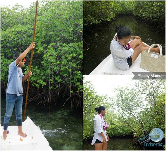 mangrove tour lembongan