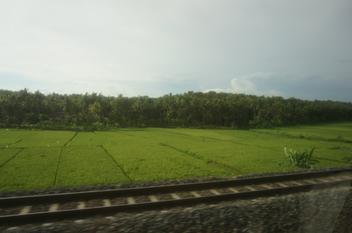 Travelling by Train Yogya Bromo