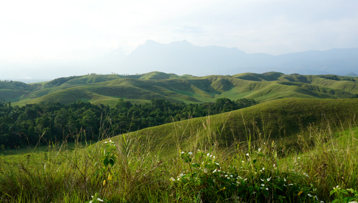 random hills in Sentani
