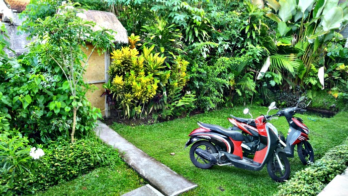 Tips living in Bali - motorbike is the best transport