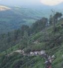 Ijen Tour, Ijen Trek, Ijen Volcano