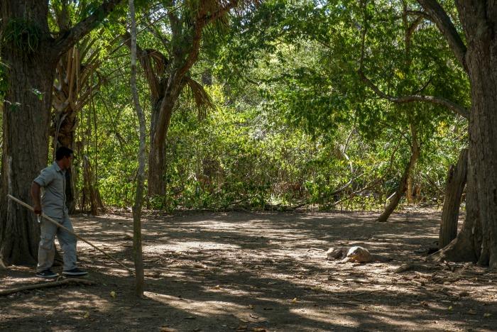 Komodo trekking short route